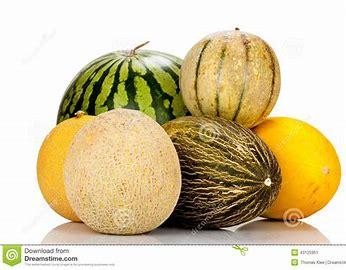 meloenen 2